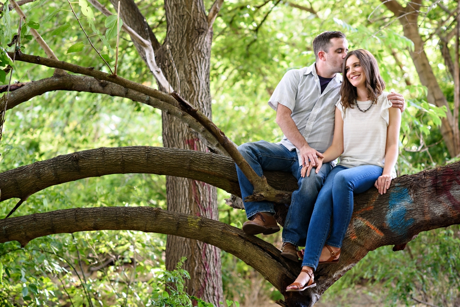 An engaged couple sit in a tree in Penn Treaty Park.